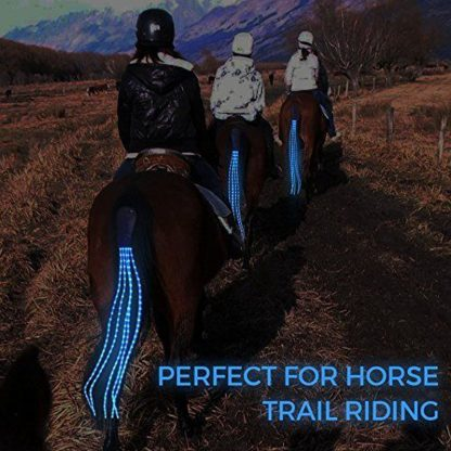 New 100CM Horse Tail USB Lights Chargeable LED Crupper Horse Harness Equestrian Outdoor Sports The Lights Horse Tail 3